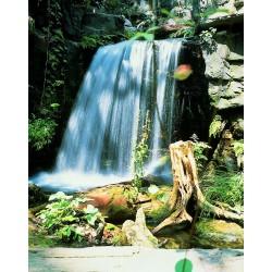 COLORADO naturel - Élément de départ