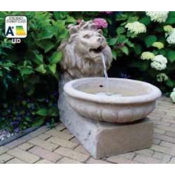 BASEL - fontaine gargouille à tête de lion   LED