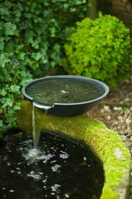 Aménager son bassin de jardin