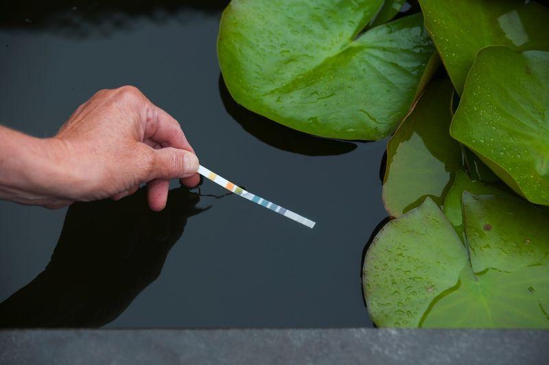 Analyse et traitement de l'eau